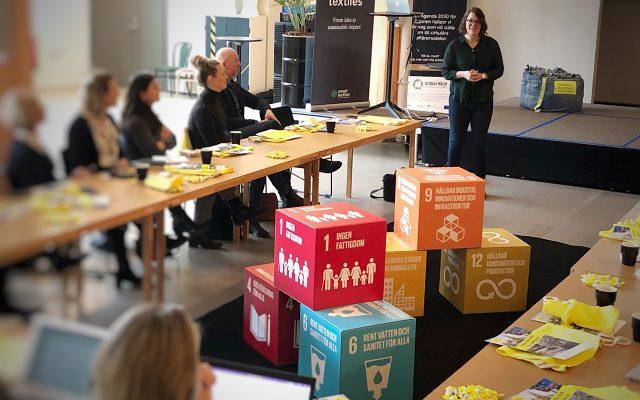 Kvinna talar inför en grupp människor. Kuber med de globala målen står i mitten av rummet.